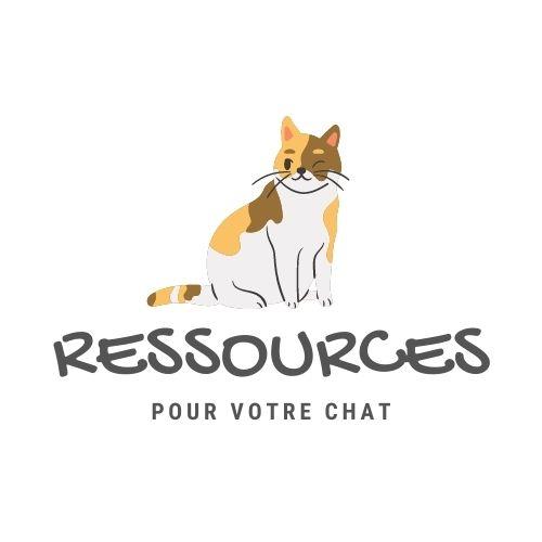 BL-Chat-Ressource