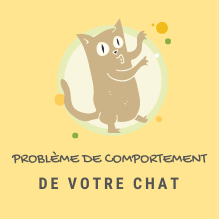 COMPORTEMENT-CHAT-ICON
