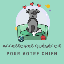 ICON-ACCESSOIRE-CHIEN