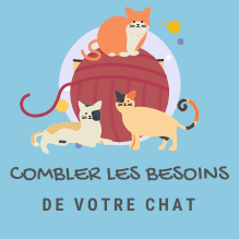 ICON-BESOIN-CHAT