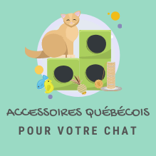 ICON-JOUET-CHAT