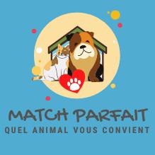 ICON-MATCH-PARFAIT