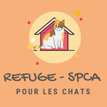 ICON-Refuge-Chat