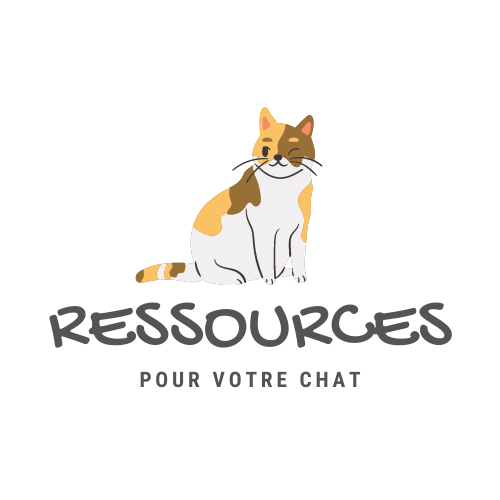 SW-Chat-Ressource